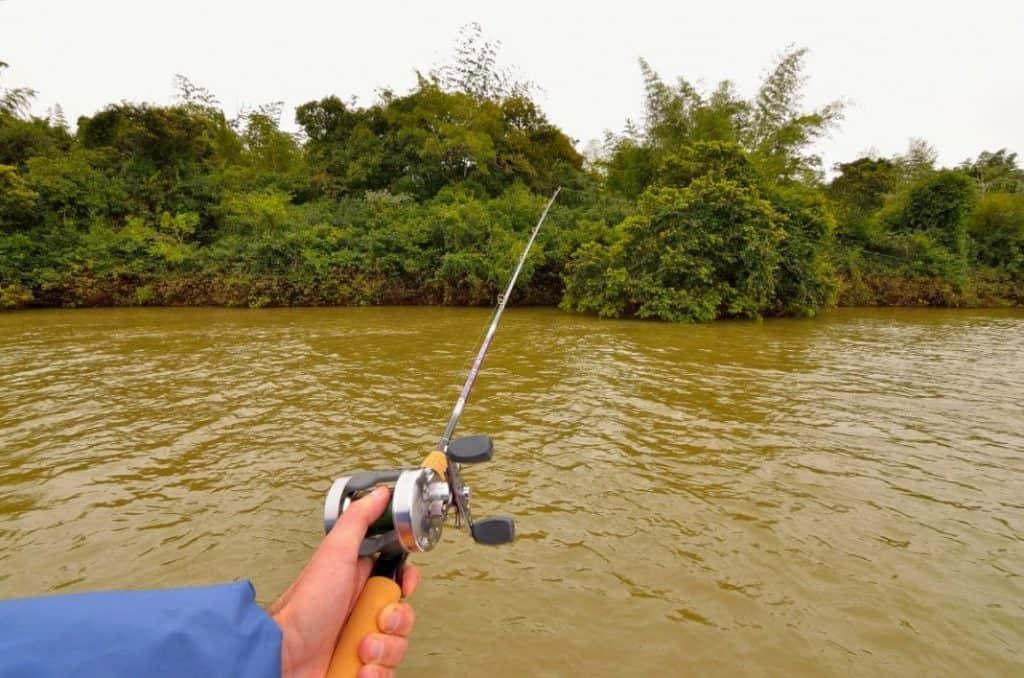 fish rio fishing ituzaingo corrientes parana itu pesca 164086