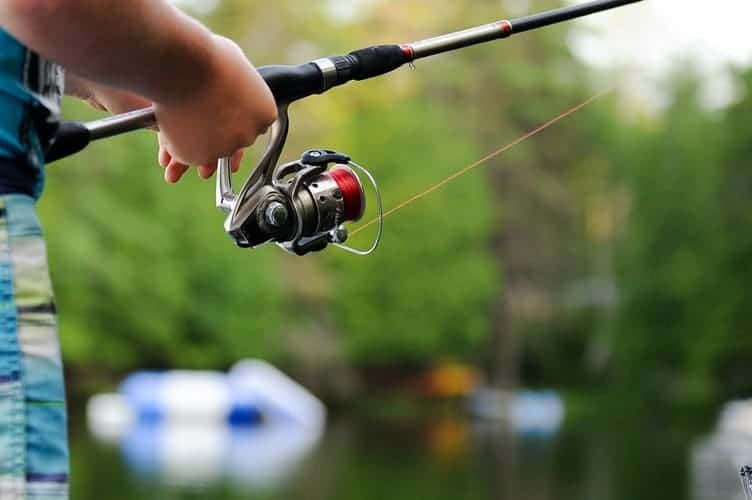 Can You Buy A Fishing License From Walmart & How Much Does
