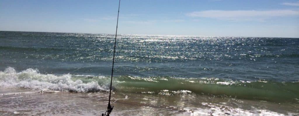 Surf Fishing | Tips & Tricks for Landing Massive Fish 3