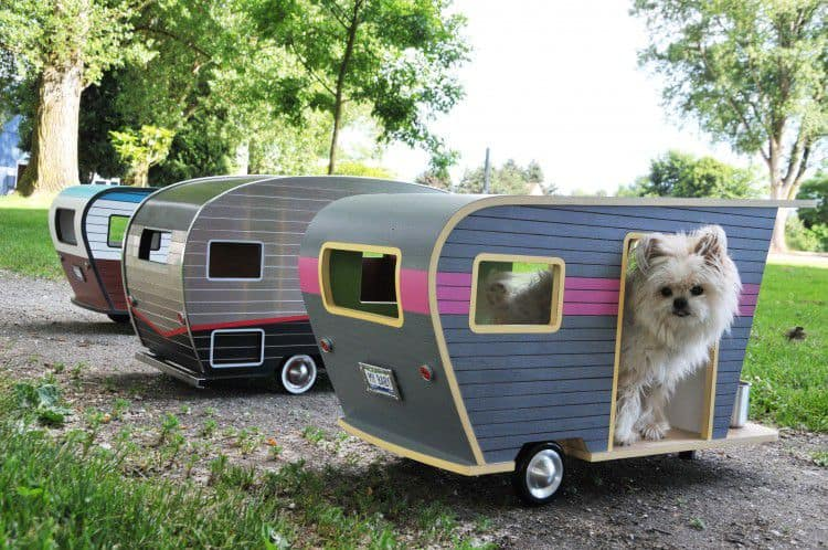 Is It Safe To Leave A Pet In An RV
