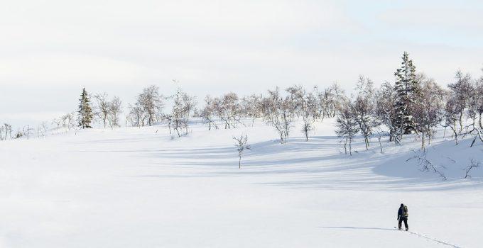 Nordic Skiing Vs Cross Country