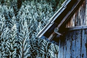 Where Can You Buy Logs for Building a Log Cabin