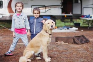 Best RVs for Big Dogs