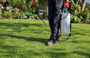 RV Antifreeze Kill Grass