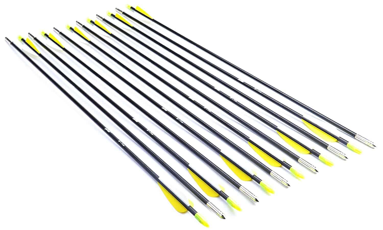 ANTSIR 28-Inch Fiberglass Archery Target Arrows