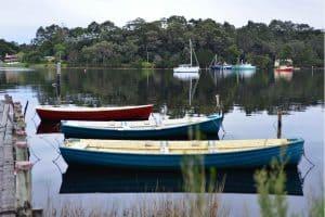 Bass Boat or Bay Boat