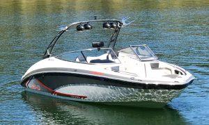 Pontoon Boat or Ski Boat