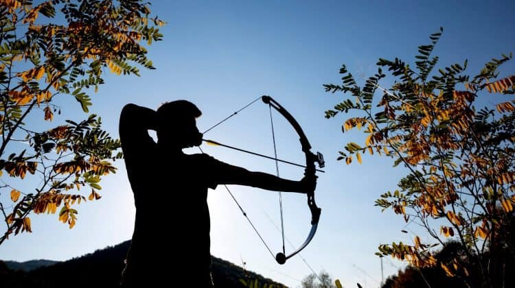 How Fast Do Arrows Fly From a Compound Bow