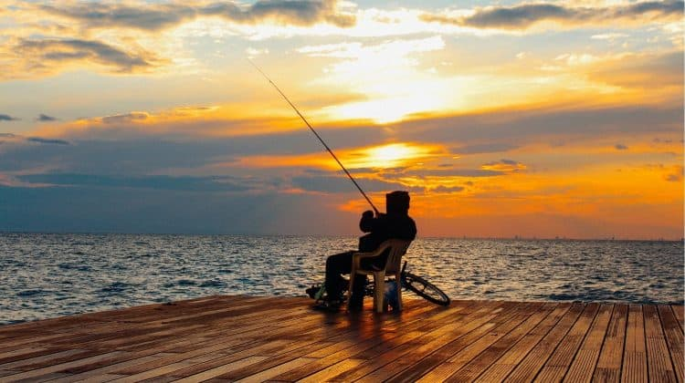 Is It Better to Fish at a High Tide or a Low Tide