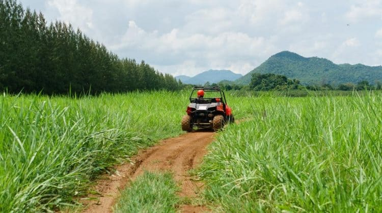 What Is the Most Reliable UTV on the Market